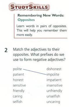 learner strategies; learning strategies